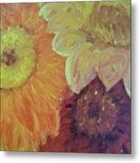 Tri Colored Daisies Metal Print