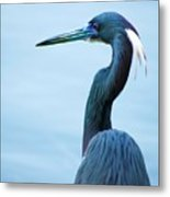 Tri Colored Pose Metal Print