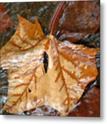 Tributaries Metal Print
