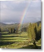 Trickle Park Rainbow Metal Print