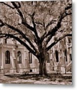 Trinity Episcopal Cathedral Court Yard Metal Print