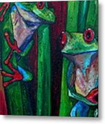 Trinity Of Tree Frogs Metal Print
