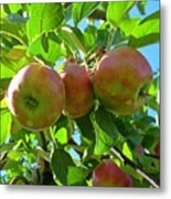 Trio Of Apples Metal Print