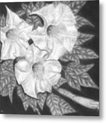 Trio Of Heavenly Blossoms Metal Print