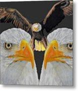 Triple Eagle Metal Print
