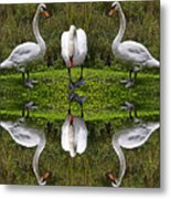 Triplets In Reflection Metal Print
