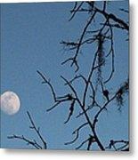 Trompe L Oeil Moon Metal Print