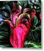 Anthurium Red Tropical Flower Metal Print