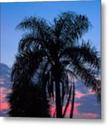 Tropic Sunset In Floirida Metal Print