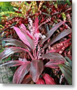 Tropic Walk Metal Print