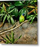 Tropical Bird 3 Metal Print