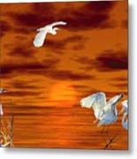 Tropical Birds And Sunset Metal Print