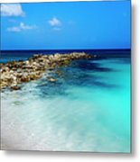 Tropical Blues Metal Print