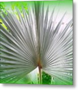 Tropical Fan Metal Print