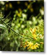 Tropical Flowers 7 Metal Print