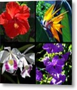 Tropical Flowers Multiples Metal Print