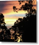 Tropical Lullaby Metal Print