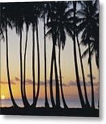 Tropical Palm Sunset Metal Print