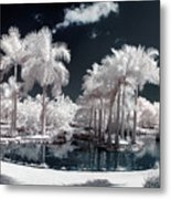 Tropical Paradise Infrared Metal Print