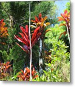 Tropical Plant In Garden Of Eden Metal Print
