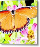 Tropical Queen Butterfly, Soldier Butterfly Metal Print