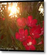 Tropical Red Metal Print
