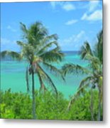 Tropical Splendor Metal Print