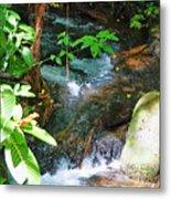 Tropical Stream Metal Print
