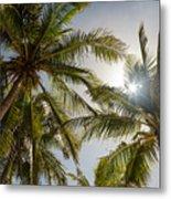 Tropical Sun Metal Print