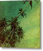 Tropical Vestige Metal Print by Andrew Paranavitana