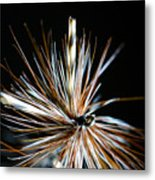 Trout Fly Metal Print