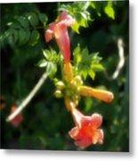 Trumpet Flower Metal Print