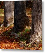 Trunk And Leaves Metal Print by Joyce Kimble Smith