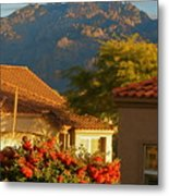 Tucson Beauty Metal Print