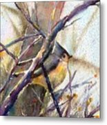 Tuffed Titmouse 2 Metal Print