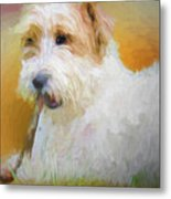 Tuffy The Russell Terrier Metal Print