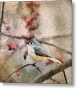 Tufted Titmouse 2 Metal Print