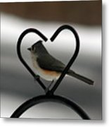 Tufted Titmouse In A Heart Metal Print