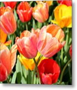 Tulip Crossing Metal Print