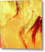 Tulip Dawn-2 Metal Print