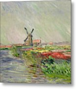 Tulip Field In Holland Metal Print