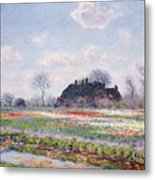Tulip Fields At Sassenheim Metal Print