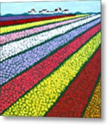 Tulip Fields Metal Print