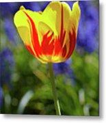 Tulip Flame Metal Print
