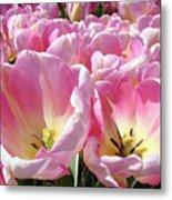 Tulip Flowers Garden Art Pink Tulips Baslee Troutman Metal Print