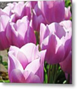 Tulip Garden Flowers Purple Lavender Pastel Art Baslee Troutman Metal Print
