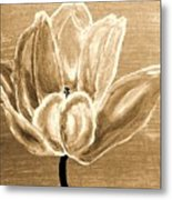 Tulip In Brown Tones Metal Print by Marsha Heiken