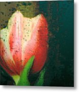 Tulip Of Love Metal Print