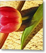 Tulip On An Open Antique Book Metal Print