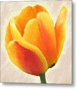 Tulip Orange Metal Print